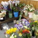 お花コーナーも色鮮やか