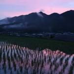 夕暮れ、田んぼに映る山のシルエット