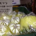花オクラ、食用に開発された花を食べるオクラです