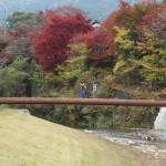 高野川にかかる小さな橋、三千院側から寂光院側へ抜ける、見晴らしの良いお散歩コースです