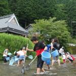 高野川水生生物調査