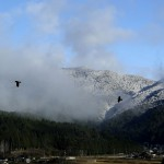 12月山は初冠雪です