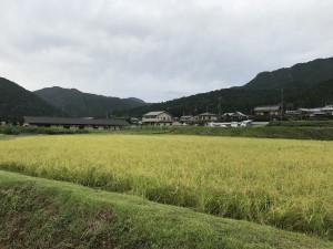 台風が接近する恐れがある為、9月4日(火)は臨時休業とさせていただきます。